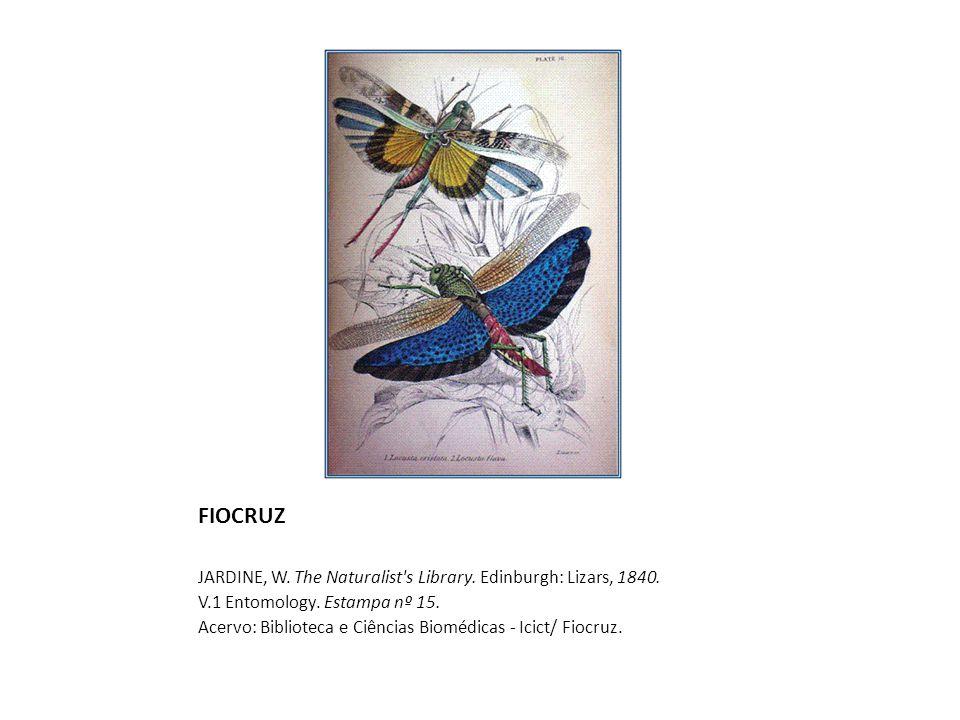 FIOCRUZ JARDINE, W. The Naturalist s Library. Edinburgh: Lizars, 1840.