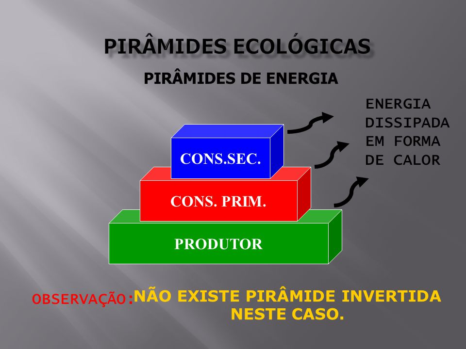 NÃO EXISTE PIRÂMIDE INVERTIDA
