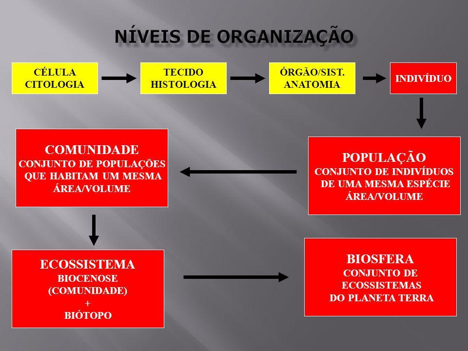 CONJUNTO DE POPULAÇÕES CONJUNTO DE INDIVÍDUOS