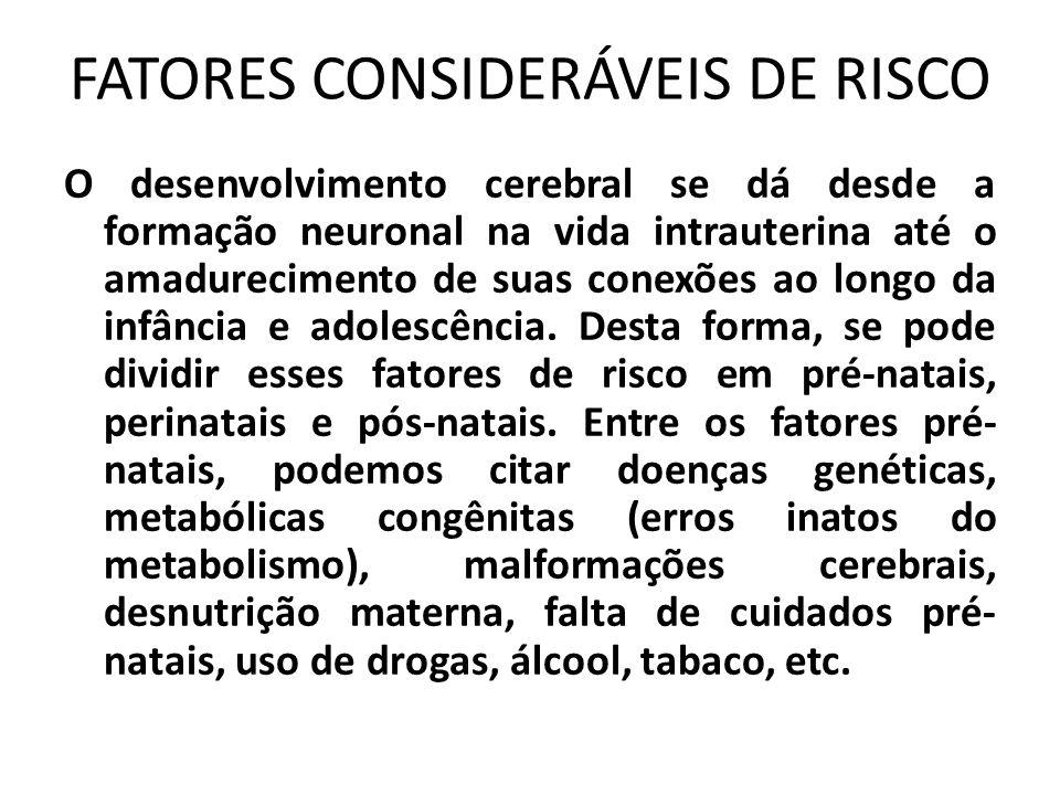 FATORES CONSIDERÁVEIS DE RISCO