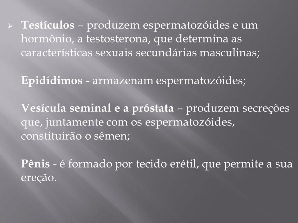Testículos – produzem espermatozóides e um hormônio, a testosterona, que determina as características sexuais secundárias masculinas; Epidídimos - armazenam espermatozóides; Vesícula seminal e a próstata – produzem secreções que, juntamente com os espermatozóides, constituirão o sêmen; Pênis - é formado por tecido erétil, que permite a sua ereção.