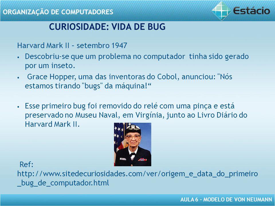 CURIOSIDADE: VIDA DE BUG