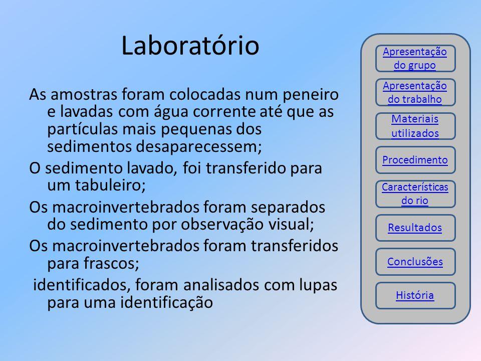 Laboratório Apresentação do grupo. Apresentação do trabalho.