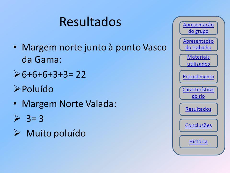 Resultados Margem norte junto à ponto Vasco da Gama: 6+6+6+3+3= 22