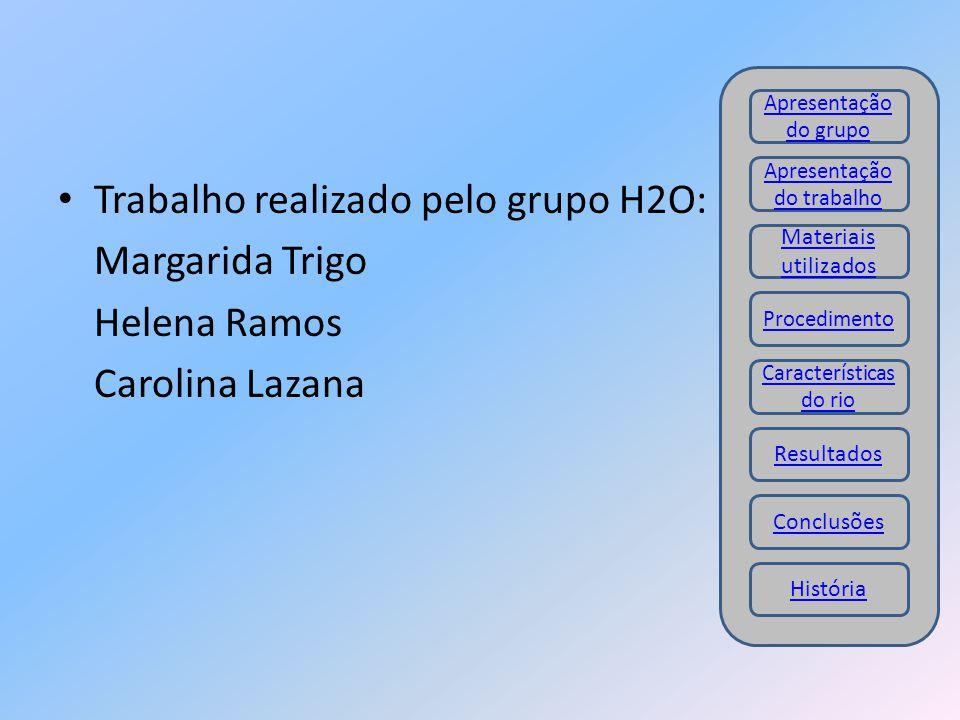 Trabalho realizado pelo grupo H2O: Margarida Trigo Helena Ramos