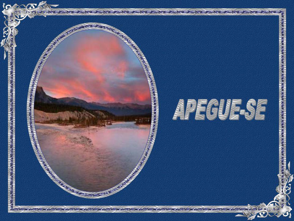 APEGUE-SE