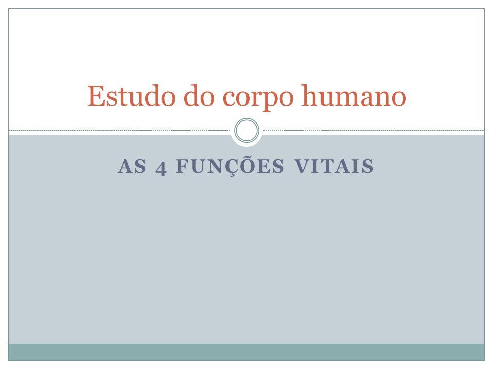 Estudo do corpo humano As 4 funções vitais