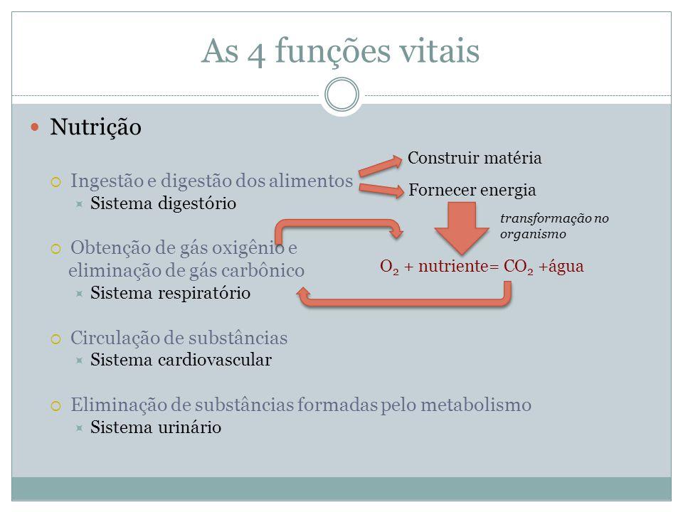 As 4 funções vitais Nutrição Ingestão e digestão dos alimentos