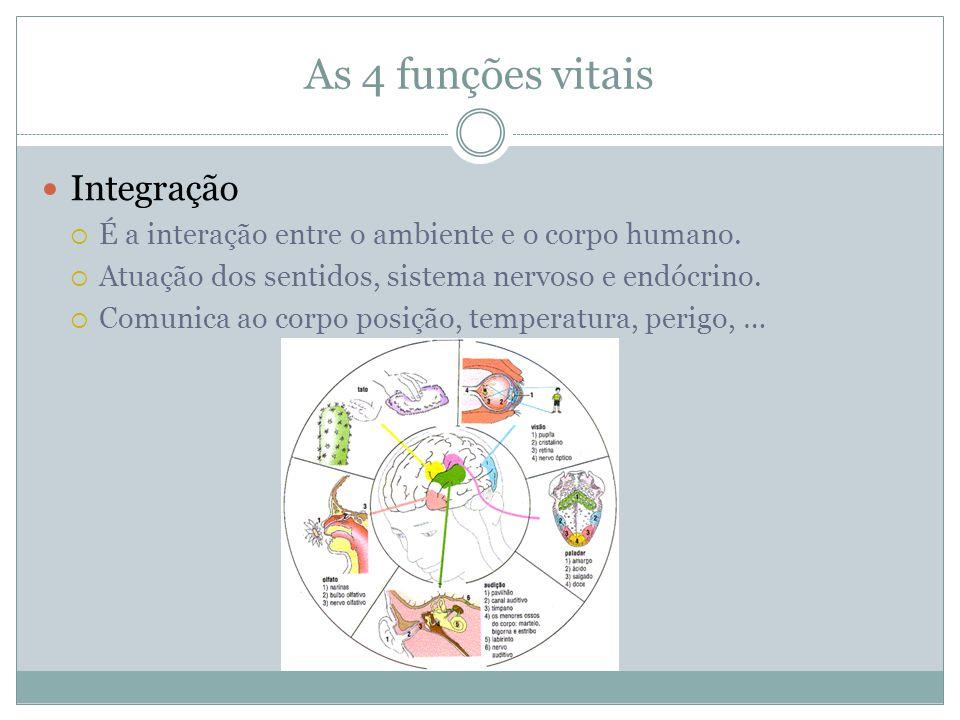 As 4 funções vitais Integração