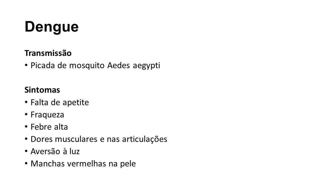 Dengue Transmissão Picada de mosquito Aedes aegypti Sintomas