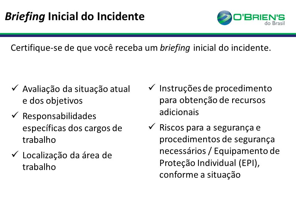 Briefing Inicial do Incidente