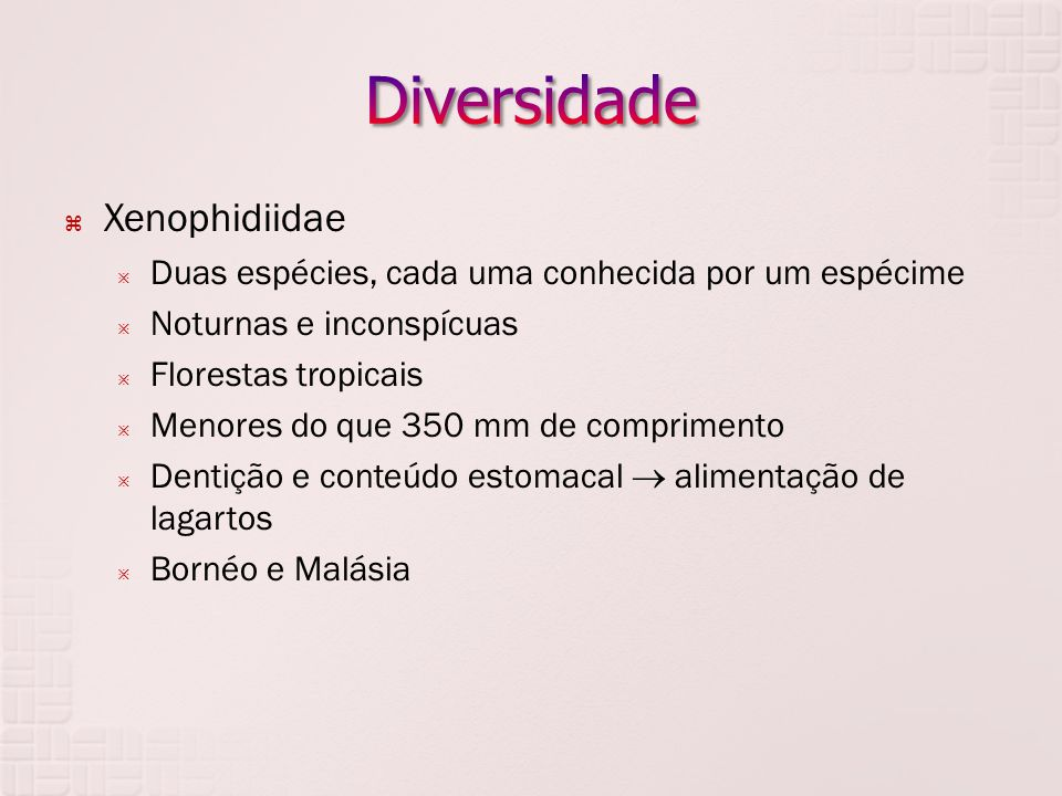 Diversidade Xenophidiidae