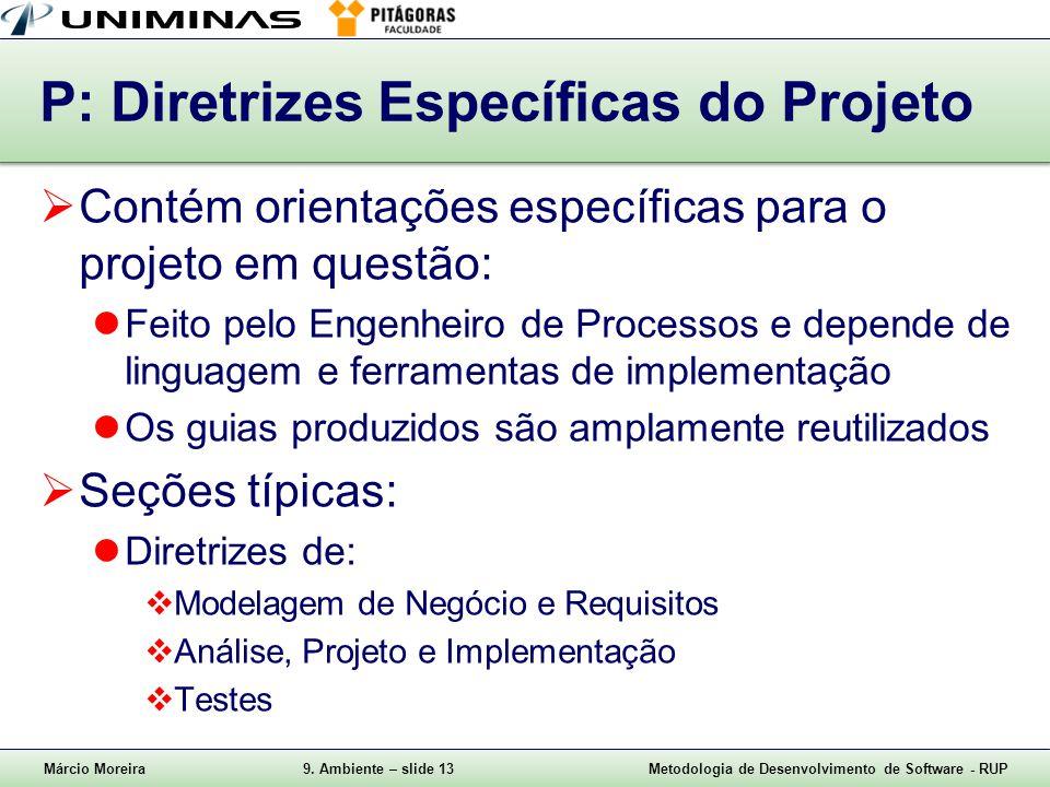 P: Diretrizes Específicas do Projeto