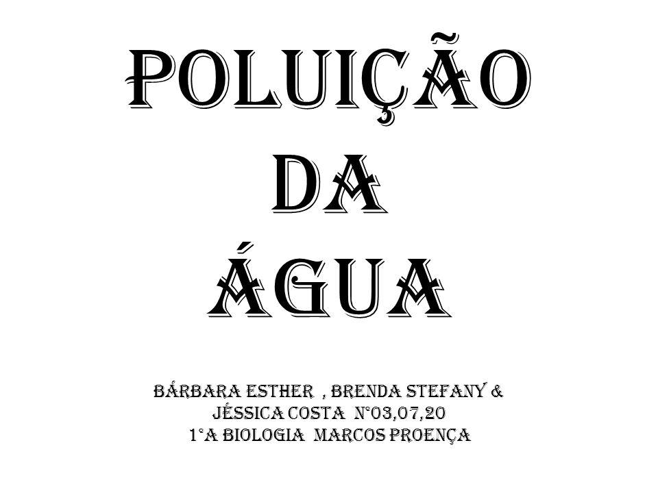 Poluição da Água Bárbara Esther , Brenda Stefany &
