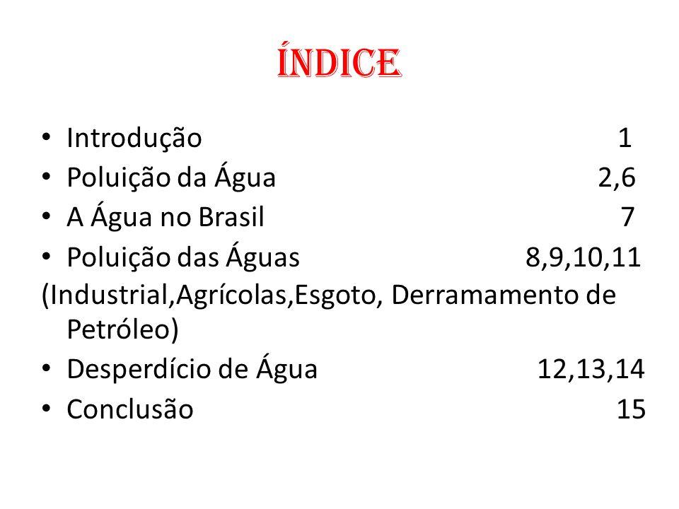 Índice Introdução 1 Poluição da Água 2,6 A Água no Brasil 7