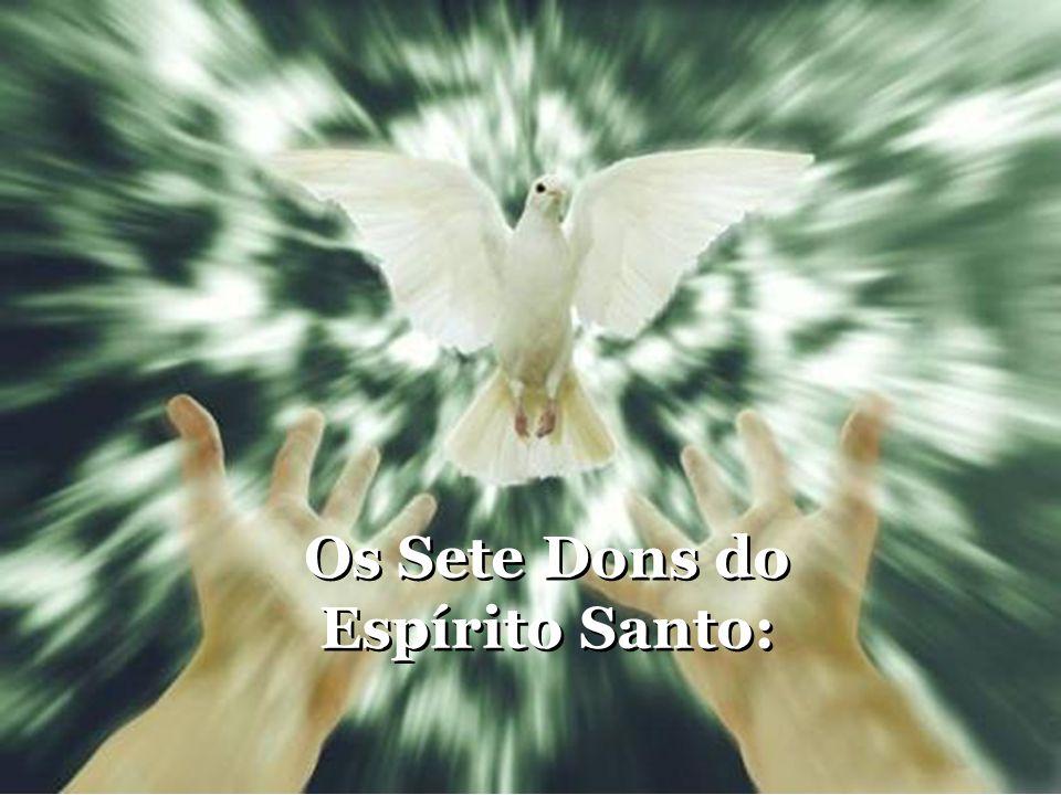 Os Sete Dons do Espírito Santo: