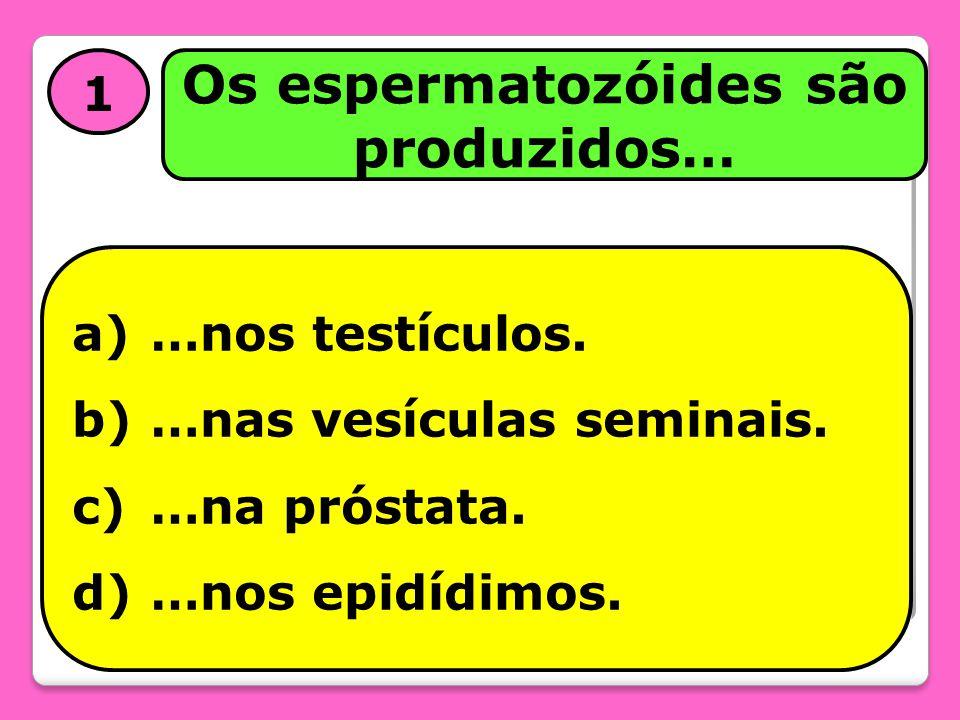 Os espermatozóides são produzidos…