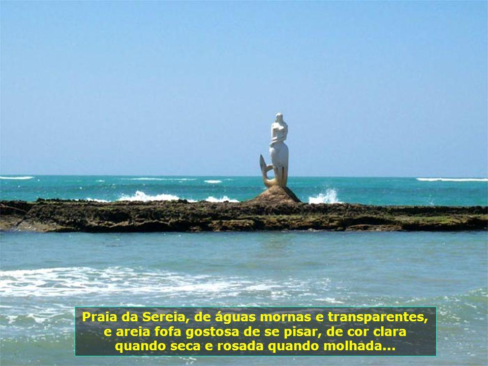 P0008041 - MACEIÓ - PRAIA DA SEREIRA