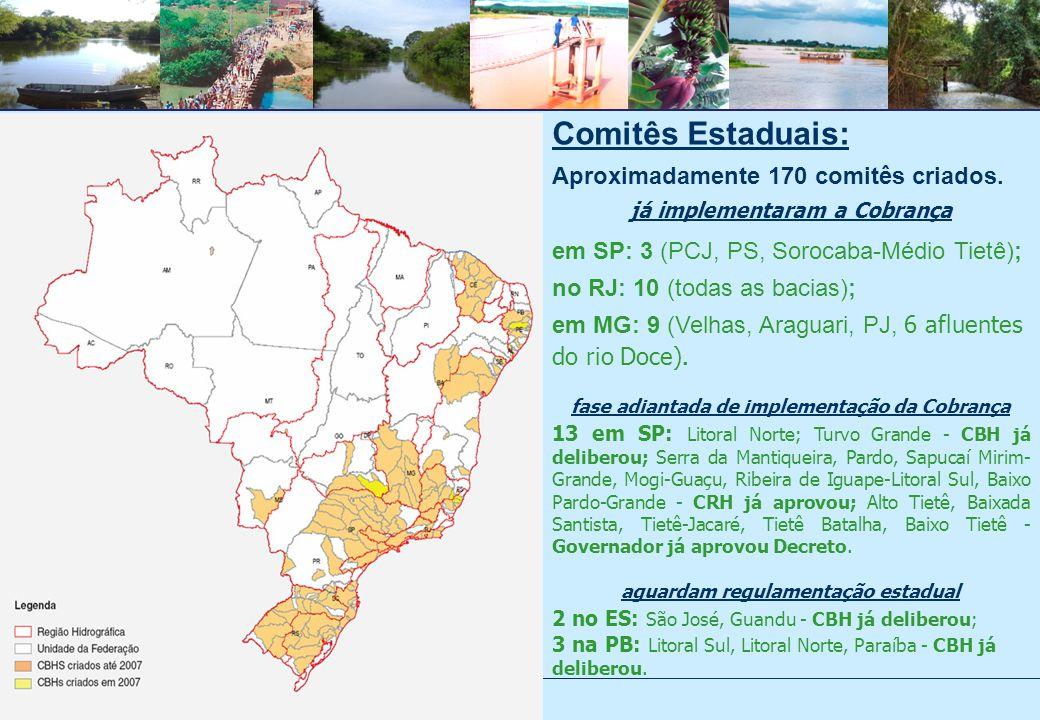 Comitês Estaduais: Aproximadamente 170 comitês criados.