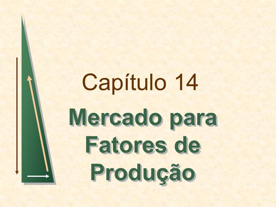 Mercado para Fatores de Produção
