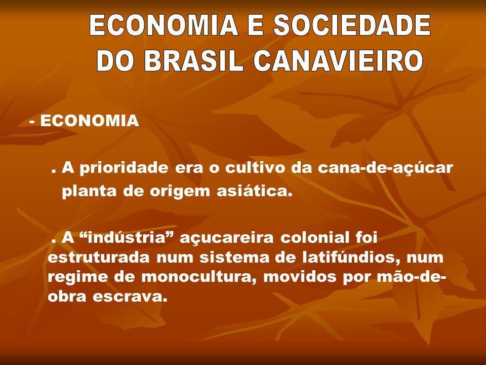 ECONOMIA E SOCIEDADE DO BRASIL CANAVIEIRO - ECONOMIA