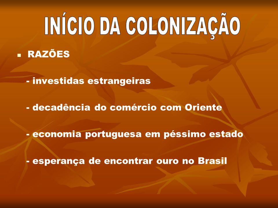 INÍCIO DA COLONIZAÇÃO RAZÕES - investidas estrangeiras