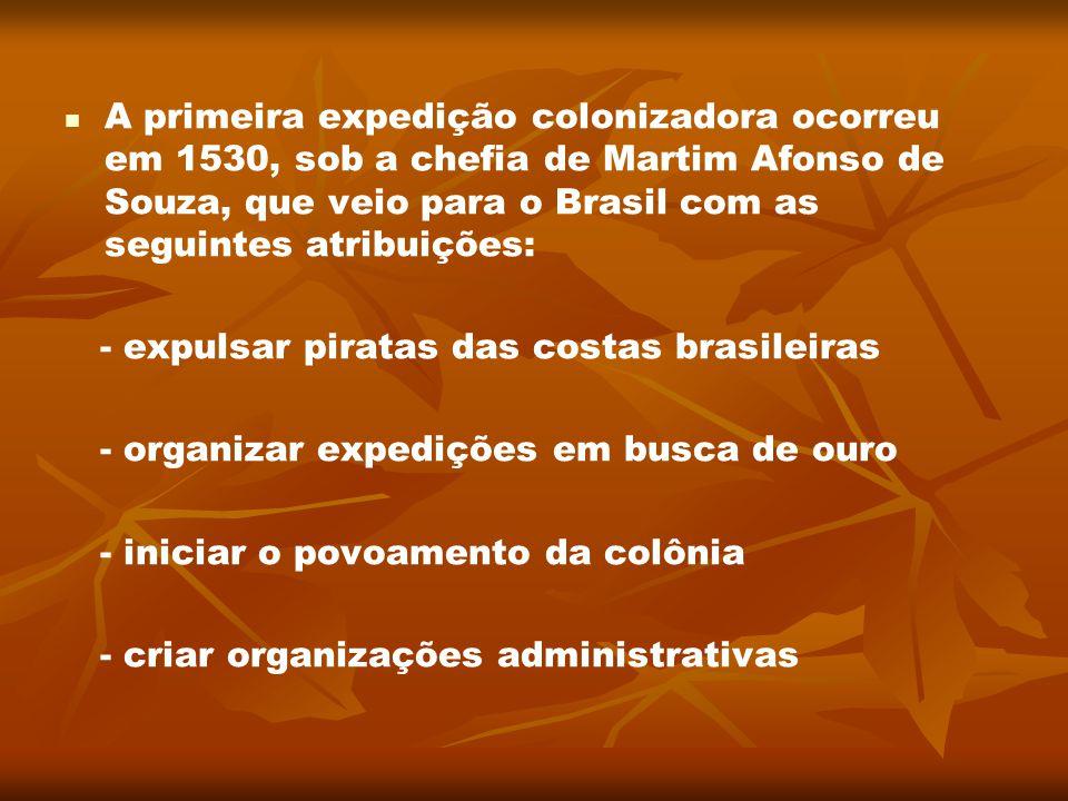 A primeira expedição colonizadora ocorreu em 1530, sob a chefia de Martim Afonso de Souza, que veio para o Brasil com as seguintes atribuições: