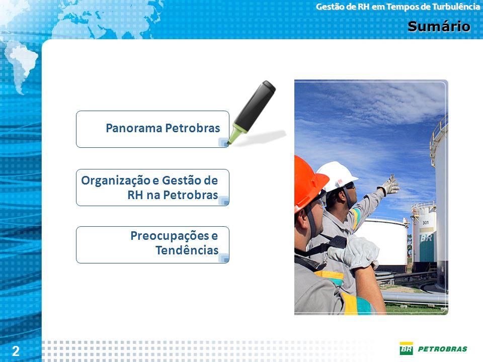 Sumário Panorama Petrobras Organização e Gestão de RH na Petrobras Preocupações e Tendências