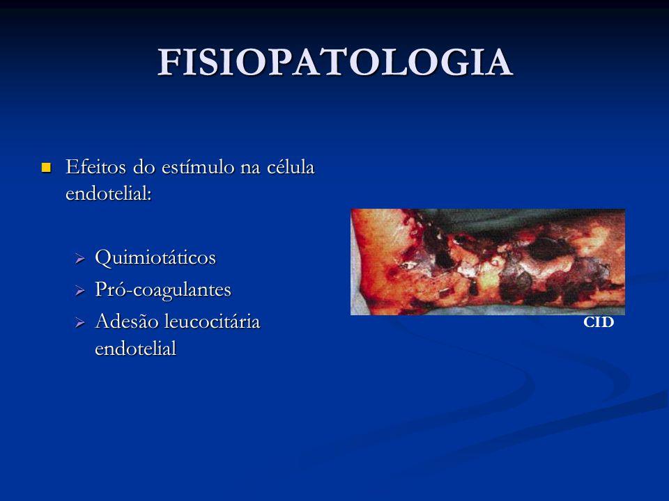 FISIOPATOLOGIA Efeitos do estímulo na célula endotelial: Quimiotáticos