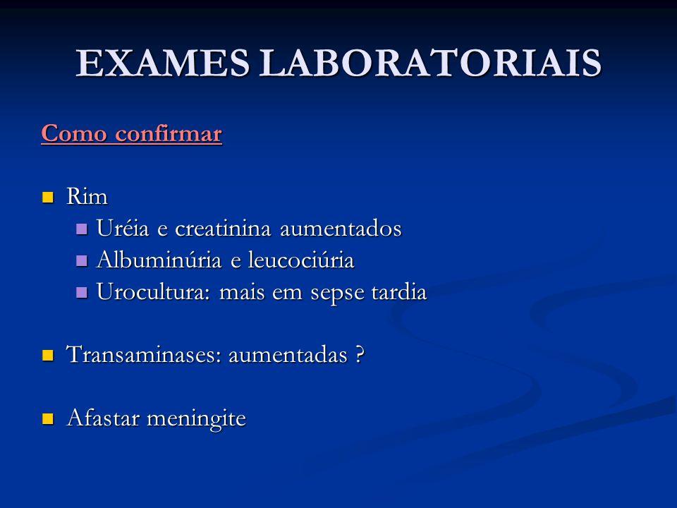 EXAMES LABORATORIAIS Como confirmar Rim Uréia e creatinina aumentados