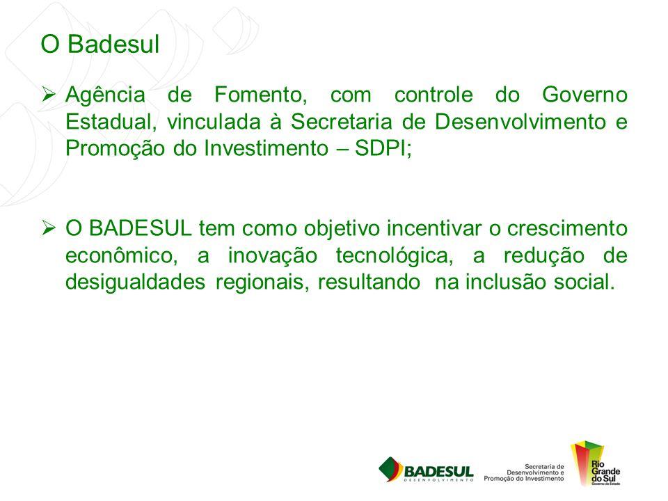 O Badesul Agência de Fomento, com controle do Governo Estadual, vinculada à Secretaria de Desenvolvimento e Promoção do Investimento – SDPI;