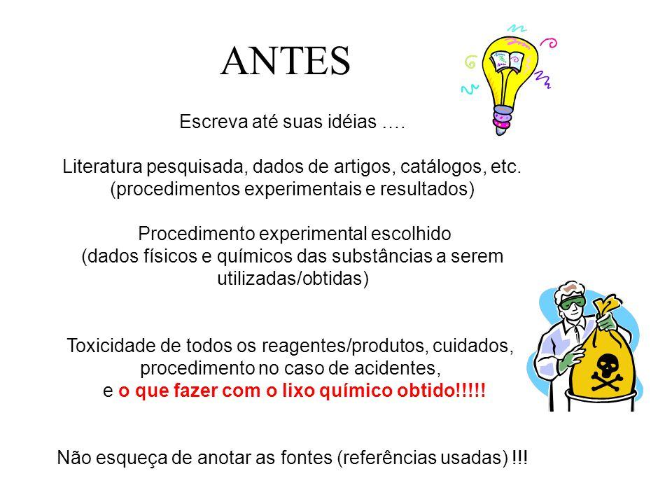 ANTES Escreva até suas idéias ….