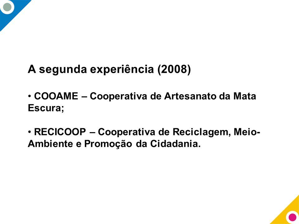 A segunda experiência (2008)
