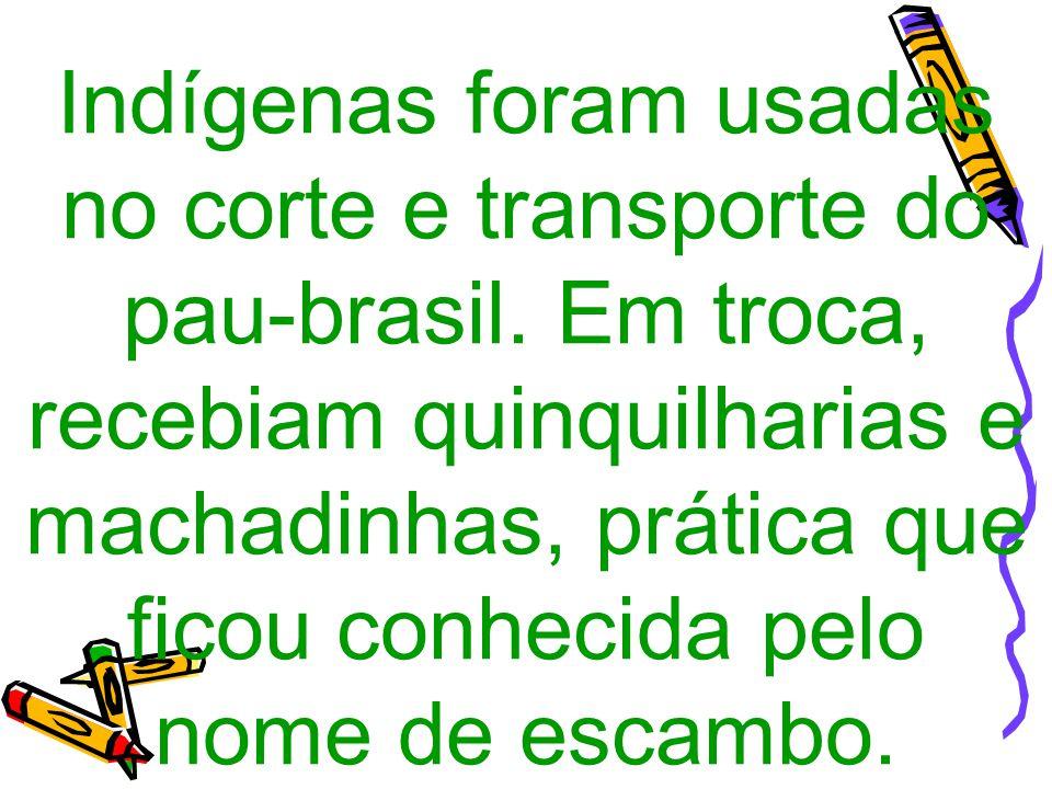 Indígenas foram usadas no corte e transporte do pau-brasil