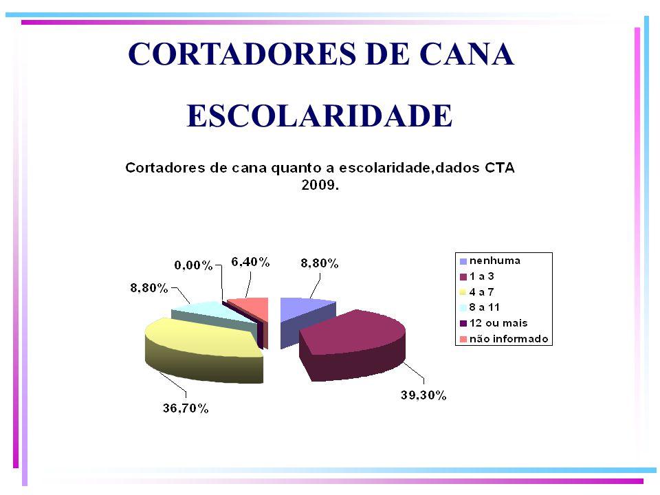 CORTADORES DE CANA ESCOLARIDADE