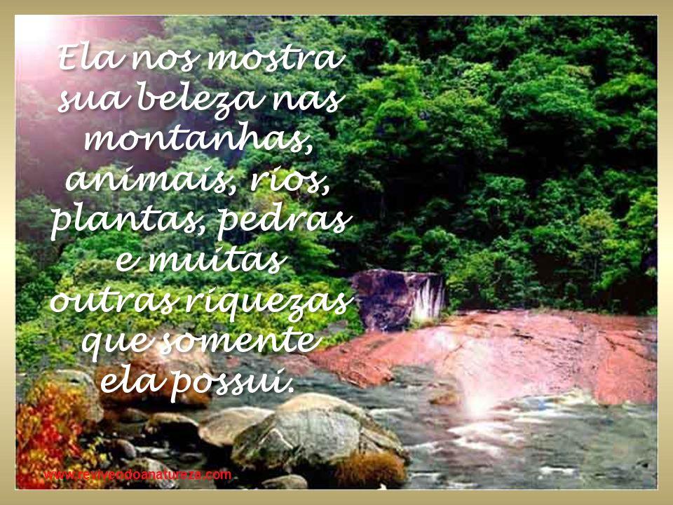 Ela nos mostra sua beleza nas montanhas, animais, rios, plantas, pedras