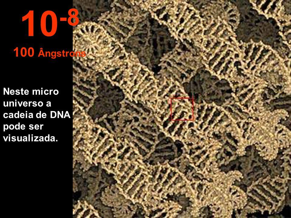 10-8 100 Ângstrons Neste micro universo a cadeia de DNA pode ser visualizada.