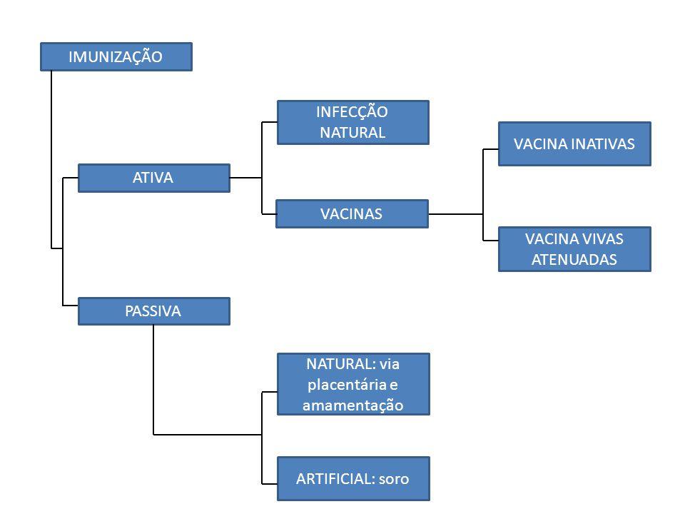 VACINA VIVAS ATENUADAS