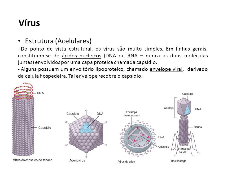 Vírus Estrutura (Acelulares)