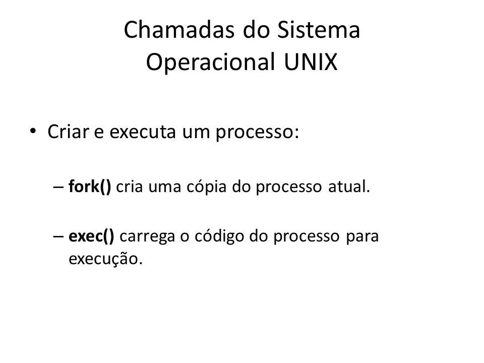Chamadas do Sistema Operacional UNIX