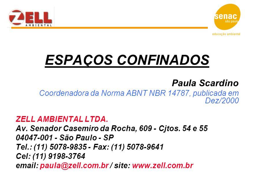 ESPAÇOS CONFINADOS Paula Scardino