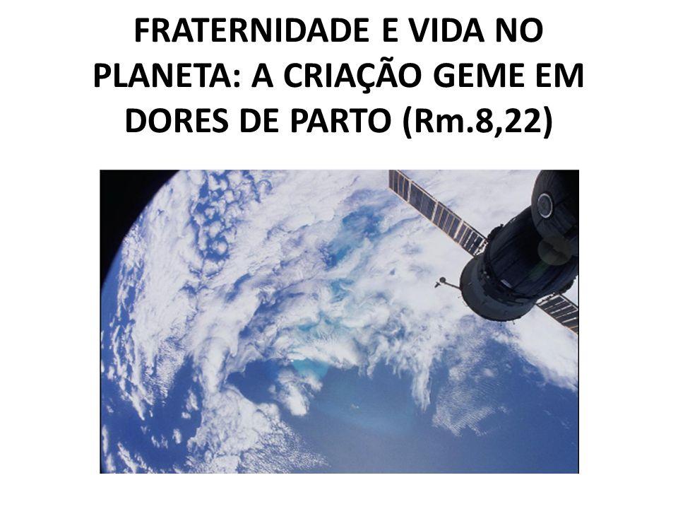 FRATERNIDADE E VIDA NO PLANETA: A CRIAÇÃO GEME EM DORES DE PARTO (Rm