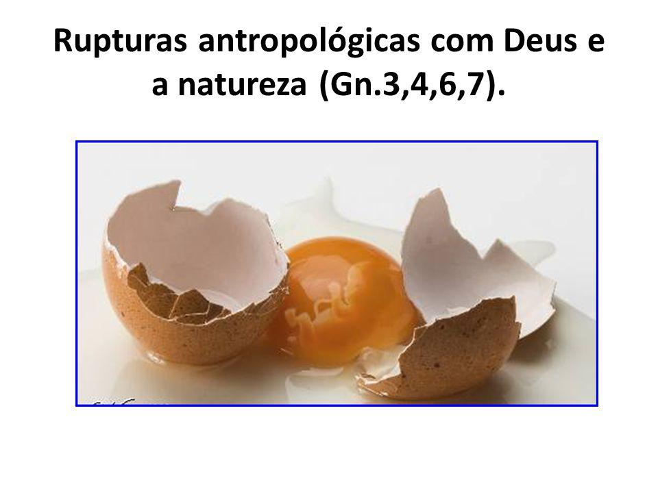 Rupturas antropológicas com Deus e a natureza (Gn.3,4,6,7).