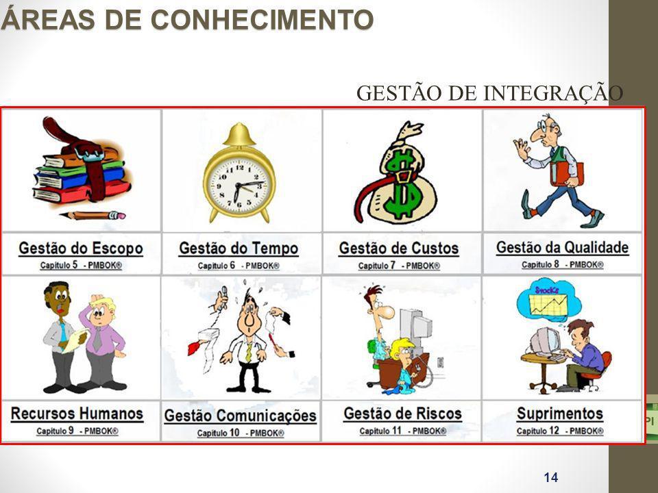ÁREAS DE CONHECIMENTO GESTÃO DE INTEGRAÇÃO 14