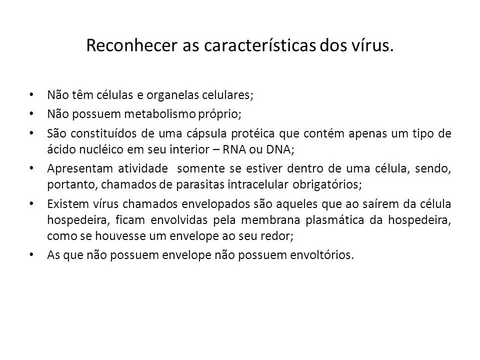 Reconhecer as características dos vírus.