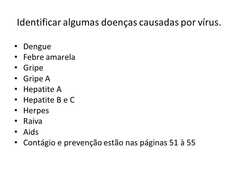 Identificar algumas doenças causadas por vírus.