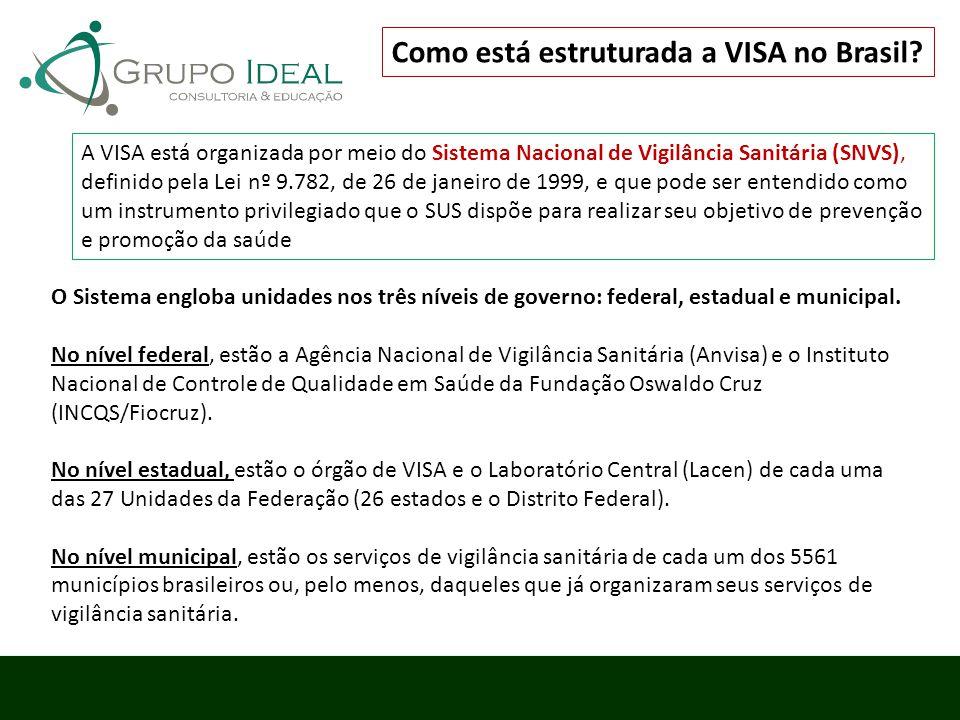 Como está estruturada a VISA no Brasil