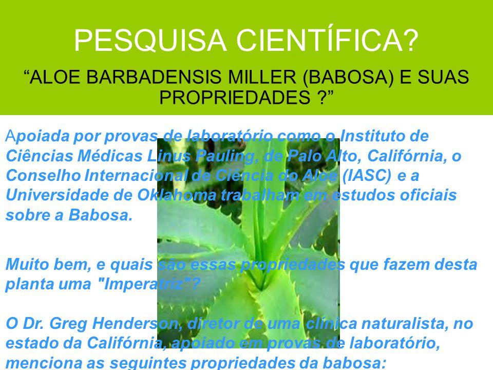 ALOE BARBADENSIS MILLER (BABOSA) E SUAS PROPRIEDADES