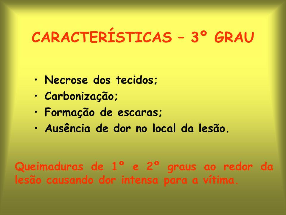 CARACTERÍSTICAS – 3º GRAU