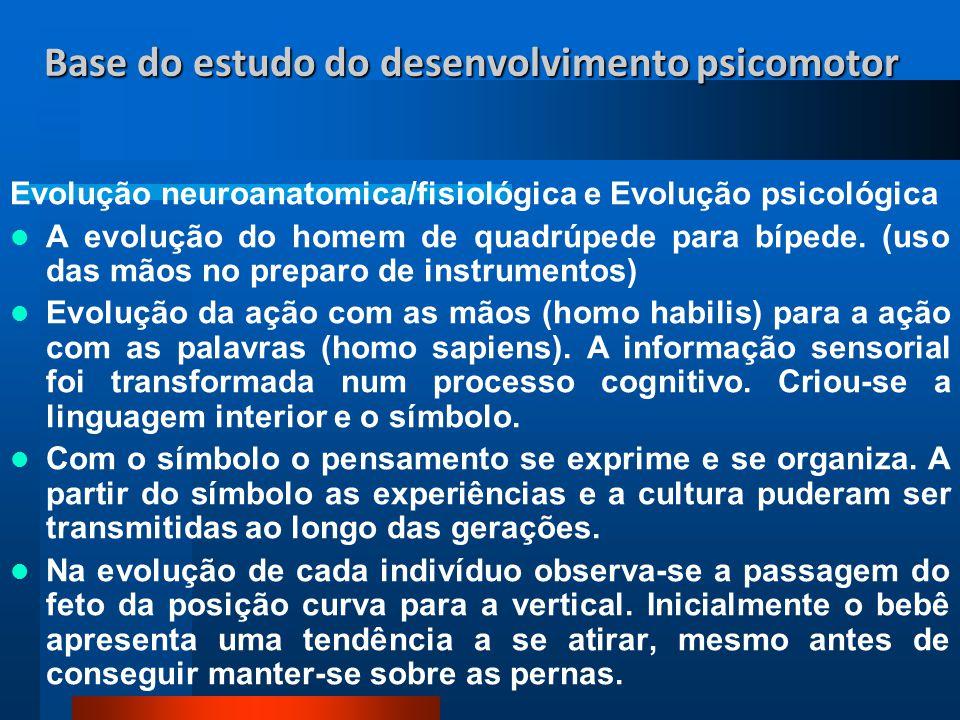 Base do estudo do desenvolvimento psicomotor